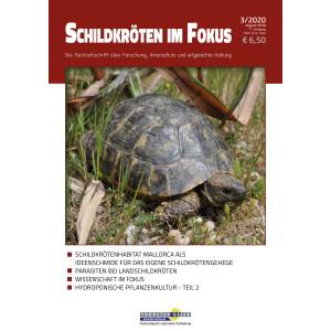 Schildkröten im Fokus - Ausgabe 3/2020