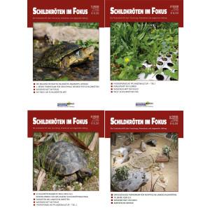 Schildkröten im Fokus - Jahrgang 2020