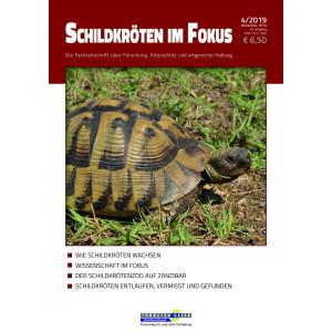 Schildkröten im Fokus - Ausgabe 4/2019